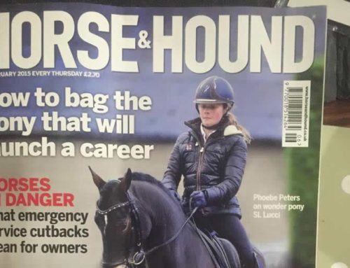 In This Month's Horse & Hounds