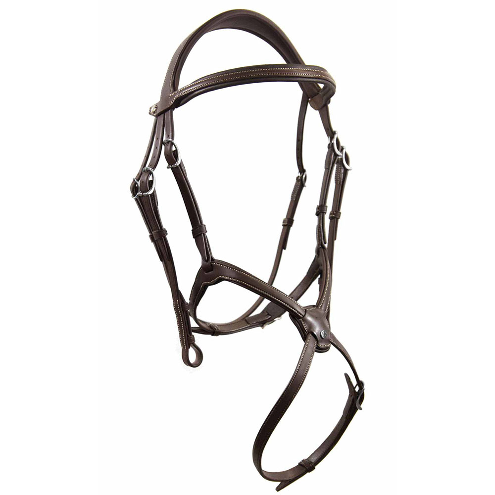 Grackle Origin Bridle