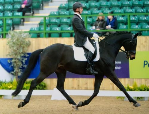 Winter Dressage Nationals